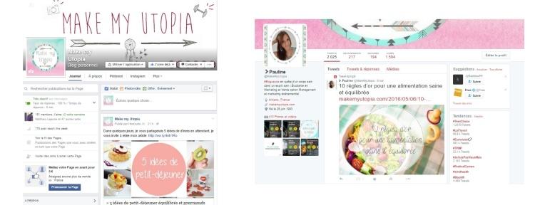 facebook twitter réseaux sociaux blog.jpg