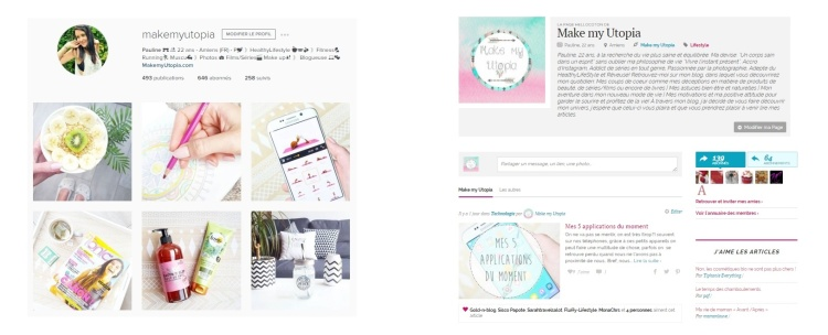 Instagram hellocoton publication réseaux sociaux blog.jpg