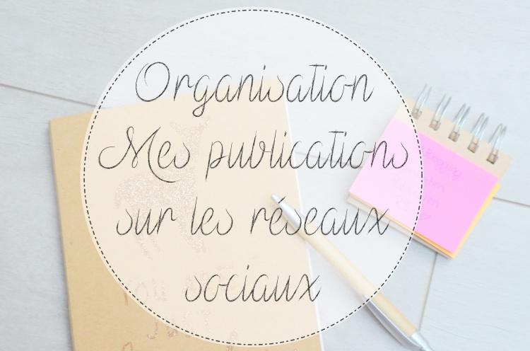 Organisation publication réseaux sociaux.JPG