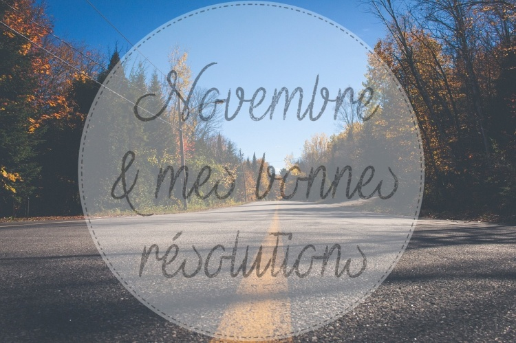 resolution-novembre-www-makemyutopia-com