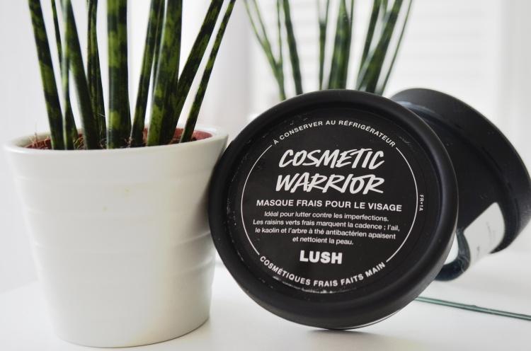 #Lush - www.makemyutopia (2).JPG