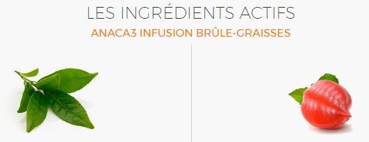 #ANACA 3 ingrédient infusion brule graisse