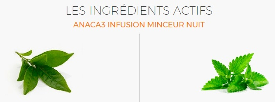 #ANACA3 ingrédient infusion nuit