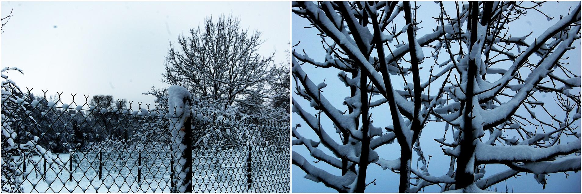 neige 2010 1