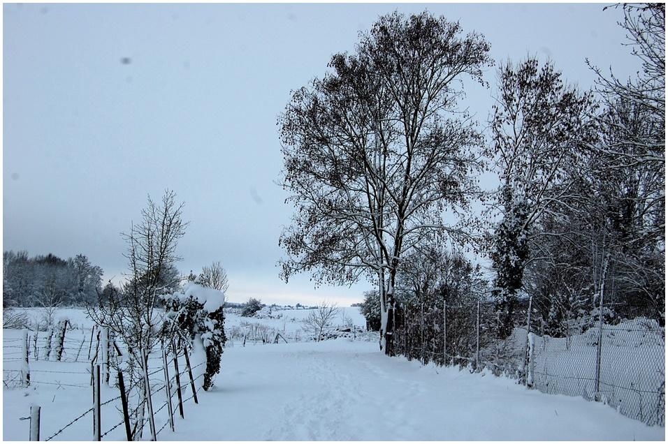 neige 2010 2